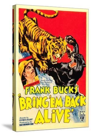 Bring 'em Back Alive, Frank Buck, 1932--Stretched Canvas Print