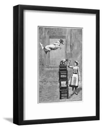 Trained Dogs, 19th Century-Science Photo Library-Framed Giclee Print