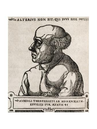 Paracelsus, Swiss Alchemist-Middle Temple Library-Framed Giclee Print