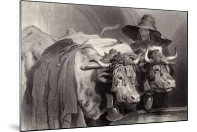 Oxen at the Tank, Geneva, Switzerland-Edwin Henry Landseer-Mounted Giclee Print