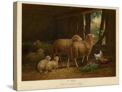The Flock--Stretched Canvas Print