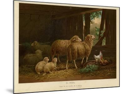 The Flock--Mounted Giclee Print