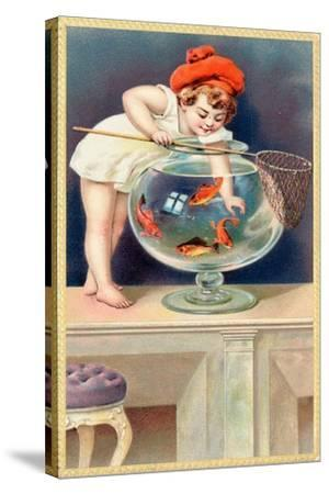 A Young Child with a Fishing Net Reaches into a Goldfish Bowl--Stretched Canvas Print