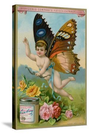 Butterfly Cherub with Roses--Stretched Canvas Print