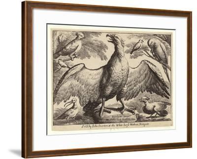 Eagle and Other Birds-Wenceslaus Hollar-Framed Giclee Print