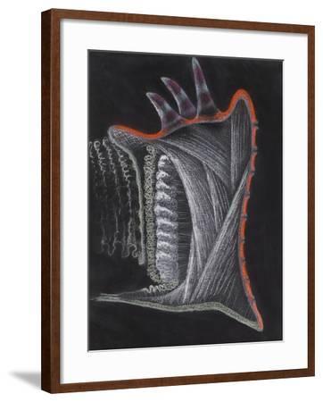 Anemone-Philip Henry Gosse-Framed Giclee Print