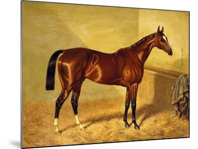 Orlando, a Bay Racehorse in a Loosebox, 1845-John Frederick Herring I-Mounted Giclee Print