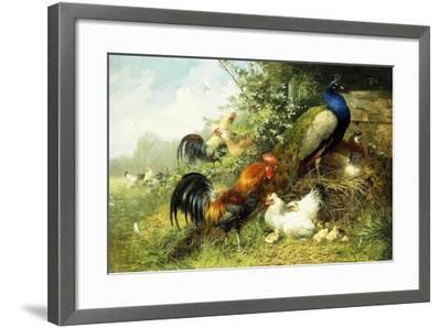 Fowl and Peacocks, 1899-Arthur Fitzwilliam Tait-Framed Giclee Print