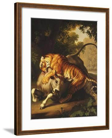 A Tiger Attacking a Bull, 1785-Johan Wenzel Peter-Framed Giclee Print