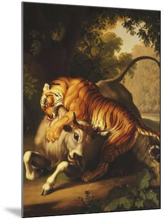 A Tiger Attacking a Bull, 1785-Johan Wenzel Peter-Mounted Giclee Print