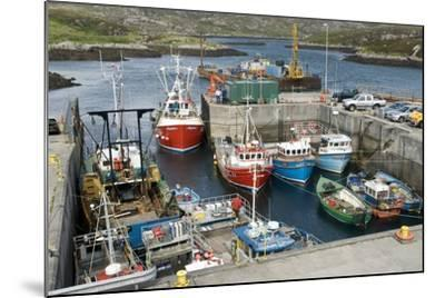 Boats In a Harbour-Adrian Bicker-Mounted Premium Photographic Print