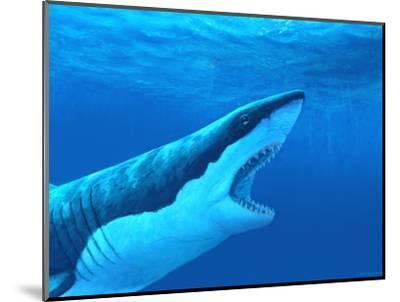 Great White Shark-Chris Butler-Mounted Premium Photographic Print