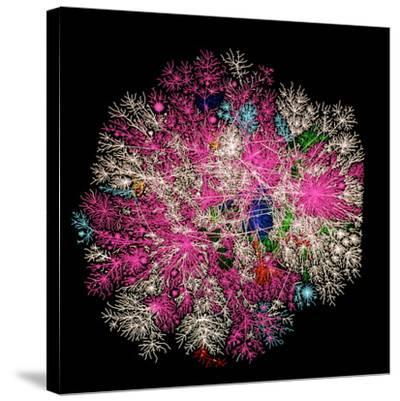 Computer Graphic of Global Internet Traffic- Caida-Stretched Canvas Print