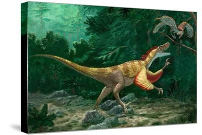Feathered Dinosaurs-Chris Butler-Stretched Canvas Print
