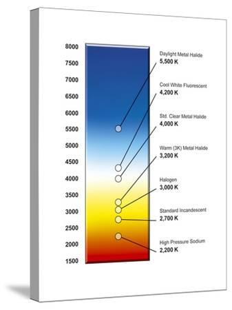Light Bulb Colour Temperature Spectrum-Henning Dalhoff-Stretched Canvas Print