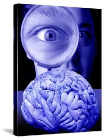 Studying the Brain, Conceptual Image-Victor De Schwanberg-Stretched Canvas Print