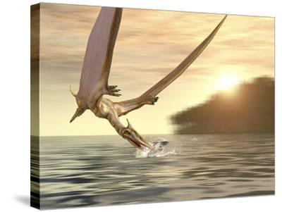 Pterosaur Fishing, Computer Artwork-Roger Harris-Stretched Canvas Print