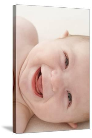 Baby Boy-Ruth Jenkinson-Stretched Canvas Print