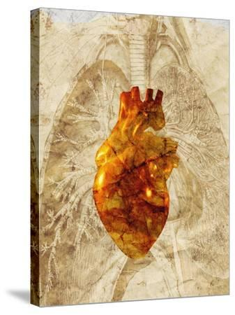 Diseased Heart-Mehau Kulyk-Stretched Canvas Print