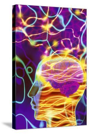 Artwork of Human Head with Brain And Light Trails-Mehau Kulyk-Stretched Canvas Print