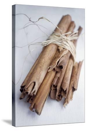 Cinnamon Sticks-Veronique Leplat-Stretched Canvas Print