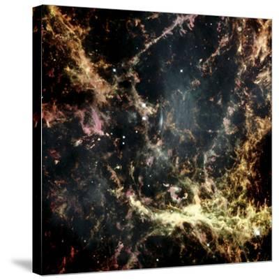Crab Nebula Gas Filaments--Stretched Canvas Print