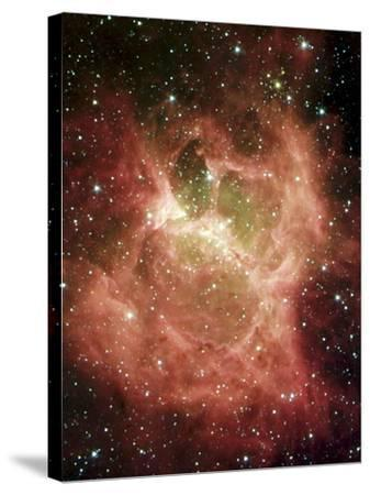 DR6 Nebula--Stretched Canvas Print