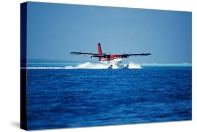 Seaplane Landing-Matthew Oldfield-Stretched Canvas Print