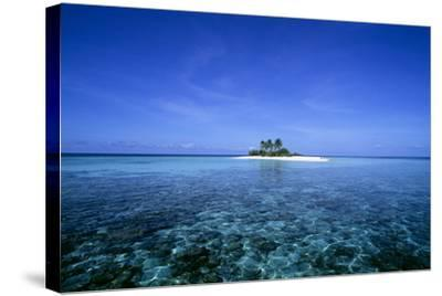 Coral Island-Alexis Rosenfeld-Stretched Canvas Print