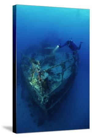 Diver on a Wreck-Alexis Rosenfeld-Stretched Canvas Print