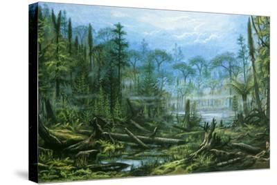 Artists Impression Of A Carboniferous Forest Photographic Print By