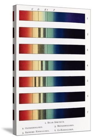Blood Spectra, 19th Century Artwork-Middle Temple Library-Stretched Canvas Print