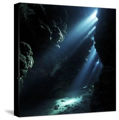 Underwater Cave-Alexander Semenov-Stretched Canvas Print