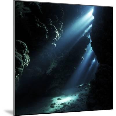 Underwater Cave-Alexander Semenov-Mounted Premium Photographic Print