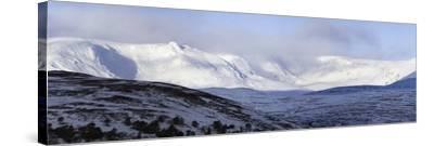 Cairngorms Plateaux, Scotland-Duncan Shaw-Stretched Canvas Print