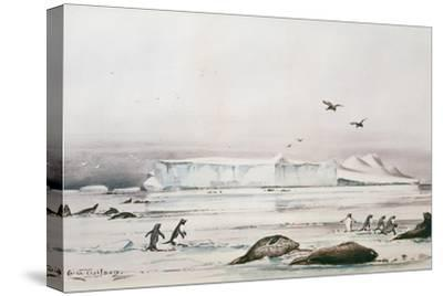 Antarctic Landscape-Edward Adrian Wilson-Stretched Canvas Print