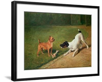Fighting over a Bone-John Emms-Framed Giclee Print