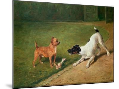 Fighting over a Bone-John Emms-Mounted Giclee Print