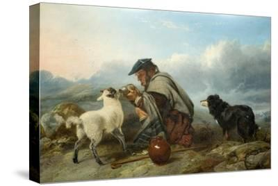The Sick Lamb, 1853-Richard Ansdell-Stretched Canvas Print