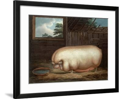 """""""This Remarkable Animal..."""", Engraved by John Whessel (C.1760-1823), 1808-Benjamin Gale-Framed Giclee Print"""