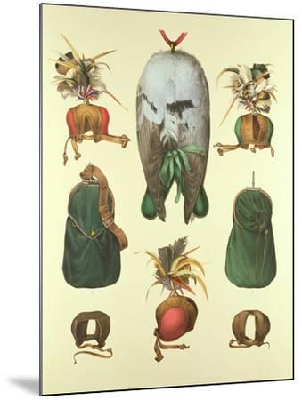 Equipment for Falconry, from 'traite De Fauconnerie' by H. Schlegel and A.H. Verster De…- Wouw Portman & Van-Mounted Giclee Print