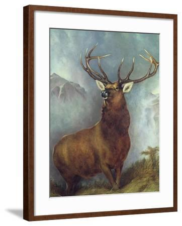 The Monarch of the Glen-William Widgery-Framed Giclee Print