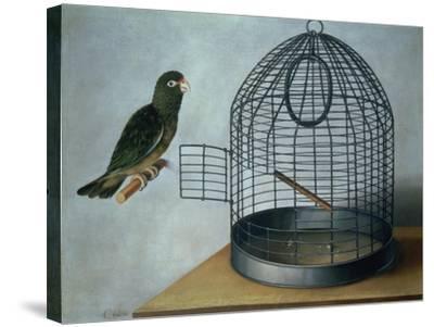 Parrot Outside His Cage-Cornelis Biltius-Stretched Canvas Print