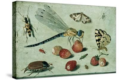A Dragon-Fly, Two Moths, a Spider and Some Beetles, with Wild Strawberries, 17th Century-Jan Van, The Elder Kessel-Stretched Canvas Print