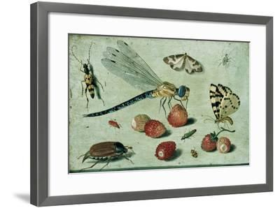 A Dragon-Fly, Two Moths, a Spider and Some Beetles, with Wild Strawberries, 17th Century-Jan Van, The Elder Kessel-Framed Giclee Print