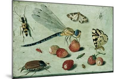 A Dragon-Fly, Two Moths, a Spider and Some Beetles, with Wild Strawberries, 17th Century-Jan Van, The Elder Kessel-Mounted Giclee Print