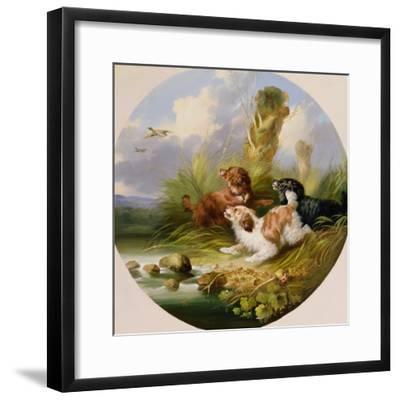 Three Spaniels Flushing Mallard-George Armfield-Framed Giclee Print