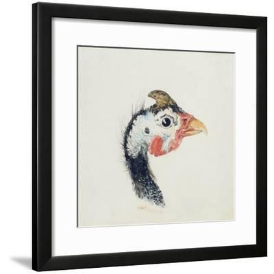 Guinea Fowl, from the Farnley Book of Birds, C.1816-J^ M^ W^ Turner-Framed Giclee Print