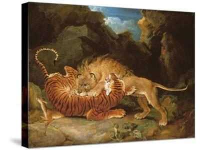 Fight Between a Lion and a Tiger, 1797-James Ward-Stretched Canvas Print