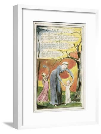 The Fly: Plate 41 from 'Songs of Innocence and of Experience' C.1802-08-William Blake-Framed Giclee Print